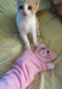 "Kizzme and The Original ""Kizzme"" Play Glove ""Pinky"""