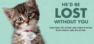 DID YOU KNOW?  Free Cat ID Tag from Arm & Hammer!